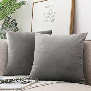 Emooqi Cojines de Terciopelo para Sofa, 40 x 40cm Decoración Cuadrado Fundas de Almohada 2 Piezas Funda Cojin para Cojines para Dormitorio y Sala de Estar Terciopelo Funda de Cojine 16 ''x16'' -Gris 6